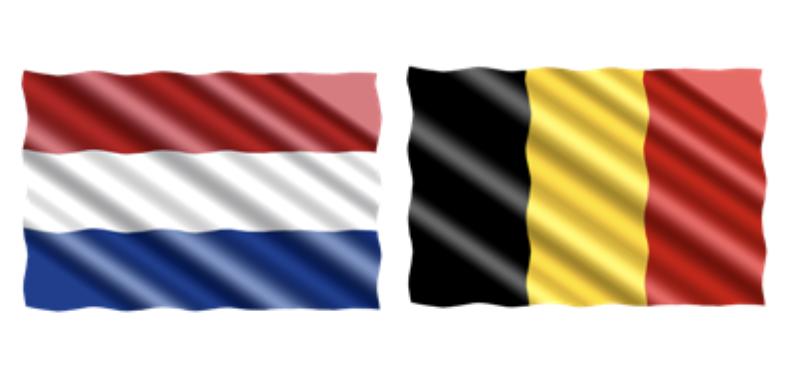 Een hoeveelheid gevaarlijke stoffen moet worden vervoerd van Rotterdam naar Antwerpen. In welke taal moet het vervoersdocument worden opgemaakt? 1